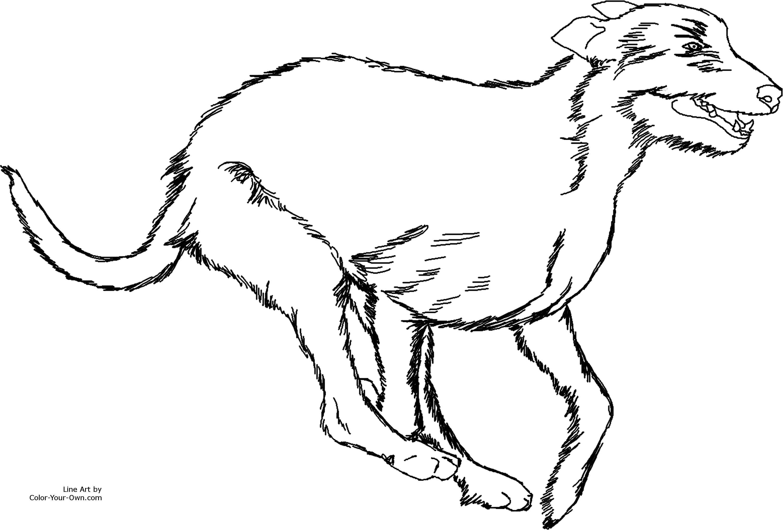 Running Dog Drawing At Getdrawings