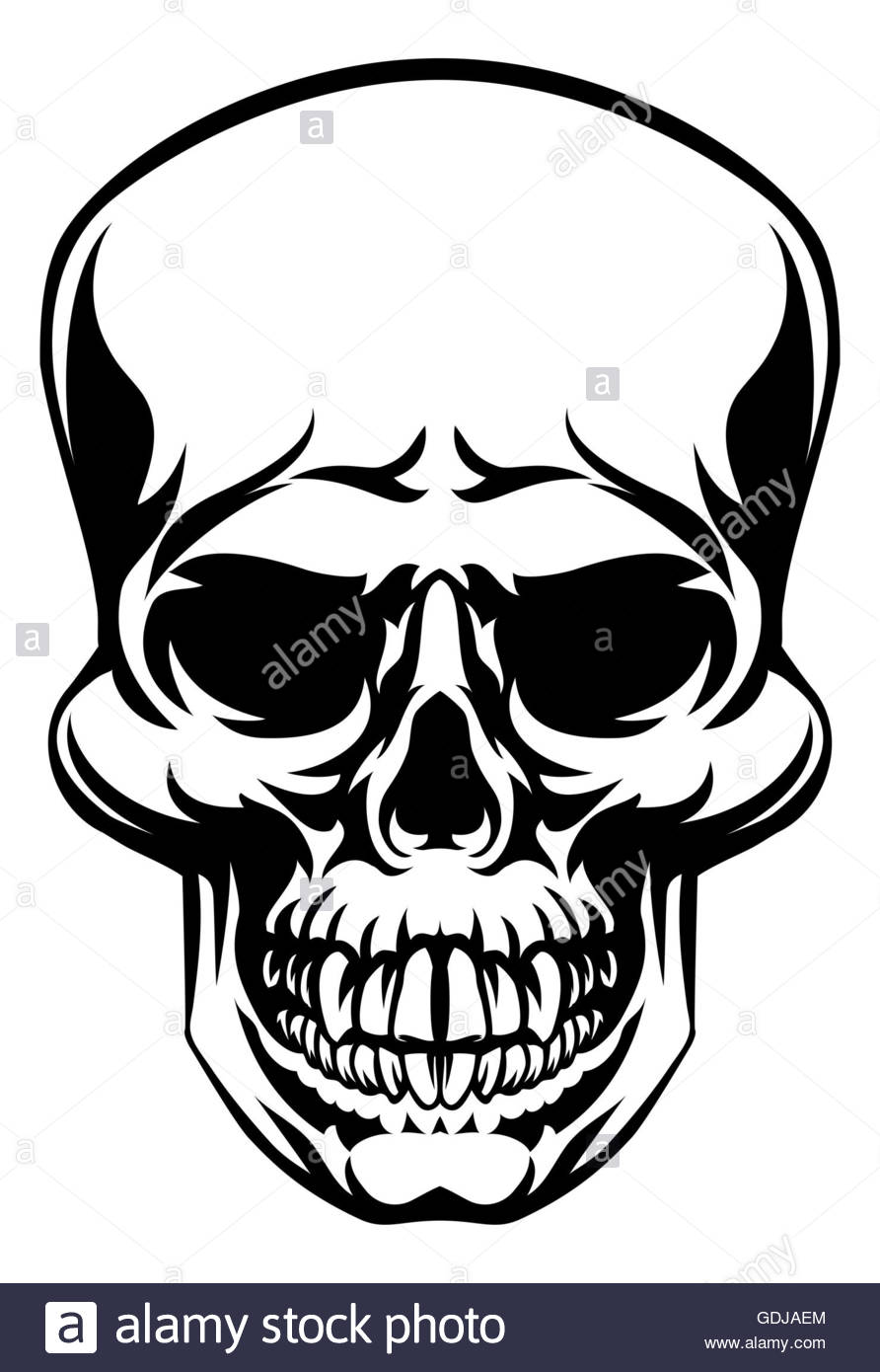hight resolution of scull drawing