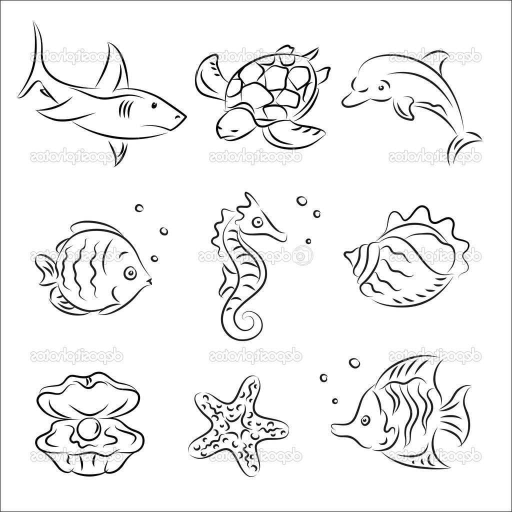 Sea Life Worksheet Ocean Animals