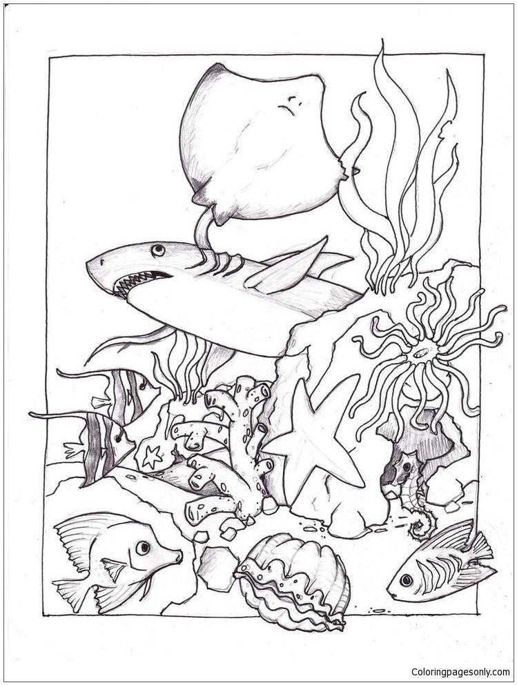 Sea Floor Drawing : floor, drawing, Floor, Drawing, GetDrawings, Download