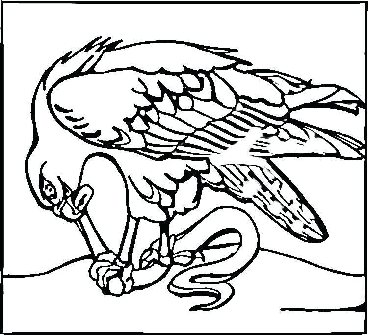 seattle seahawks drawing at getdrawings  free download