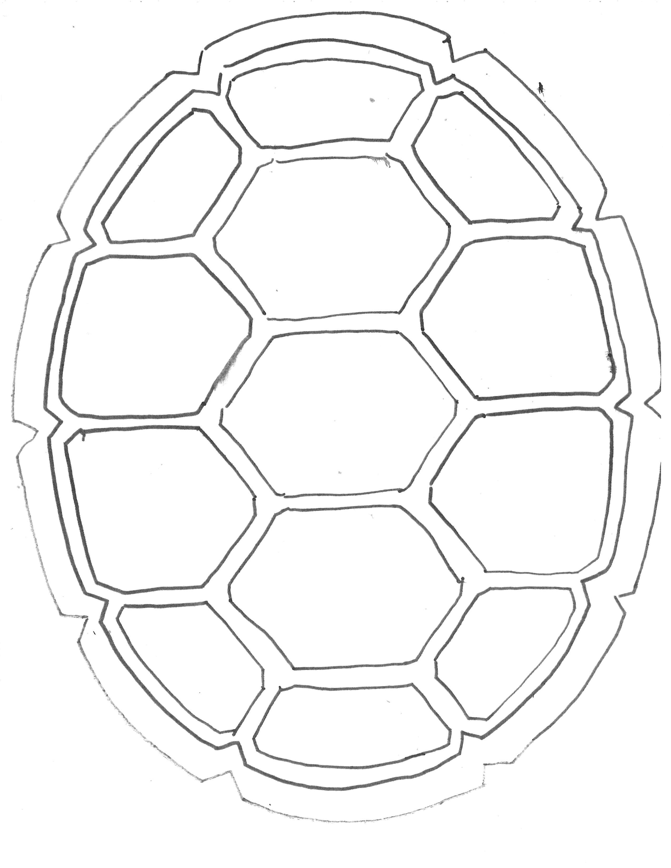 Shells Drawing At Getdrawings