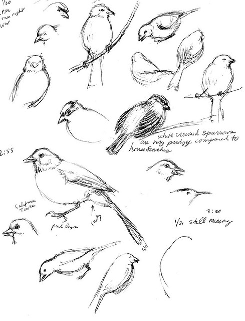 4 Wheeler Drawing At Getdrawings Com