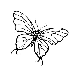 butterfly drawings simple drawing line tattoo sketch butterflies clipart easy pencil dragonfly cliparts draw tattoomenow library flying clipartmag mermaid flower