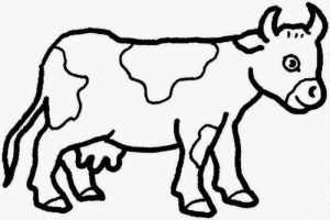 cow simple drawing coloring pages adult getdrawings