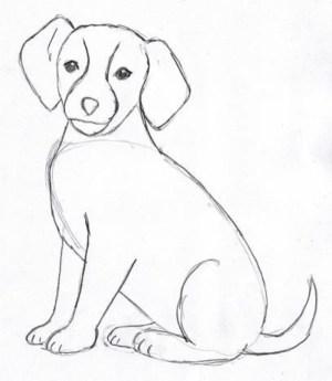 dog face drawing simple cartoon getdrawings