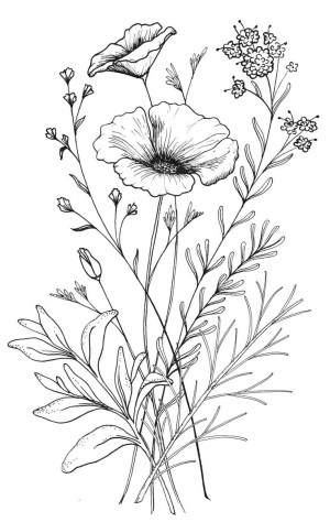 flower simple drawing easy drawings pretty getdrawings