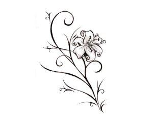 flower simple drawing pattern nice drawn lily getdrawings