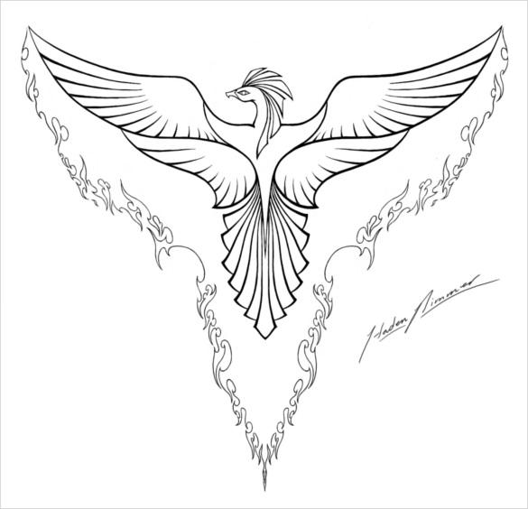 Beautiful Bird Drawing At Getdrawings Com