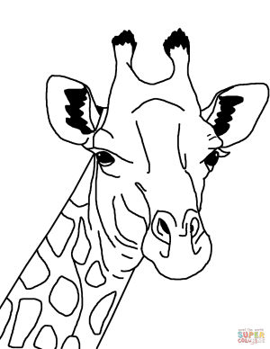 giraffe drawing simple face coloring pages printable getdrawings