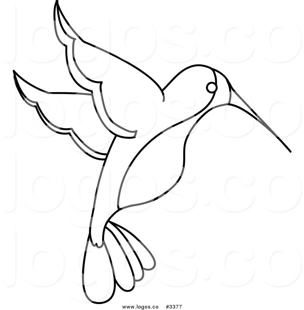 Simple Hummingbird Drawing At Getdrawings