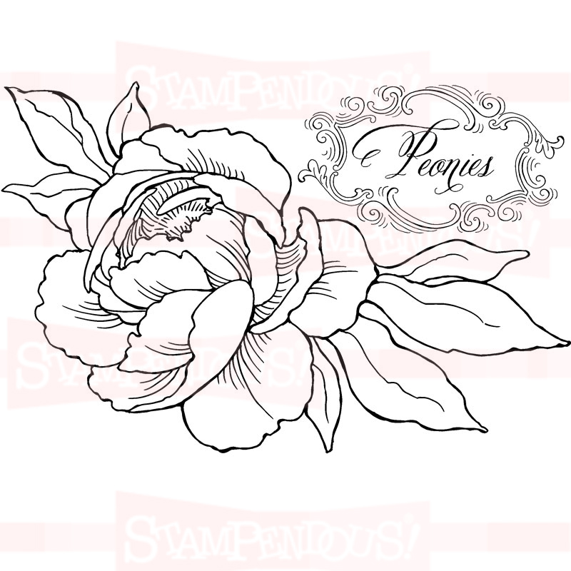 Roses In Black And White Drawing At Getdrawings Com