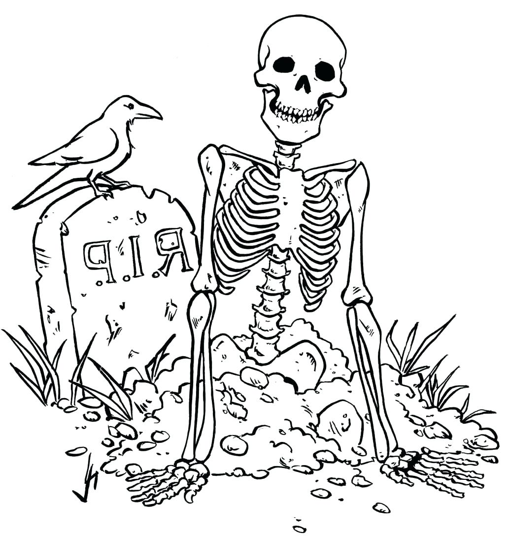 Skeleton Drawing For Kids At Getdrawings