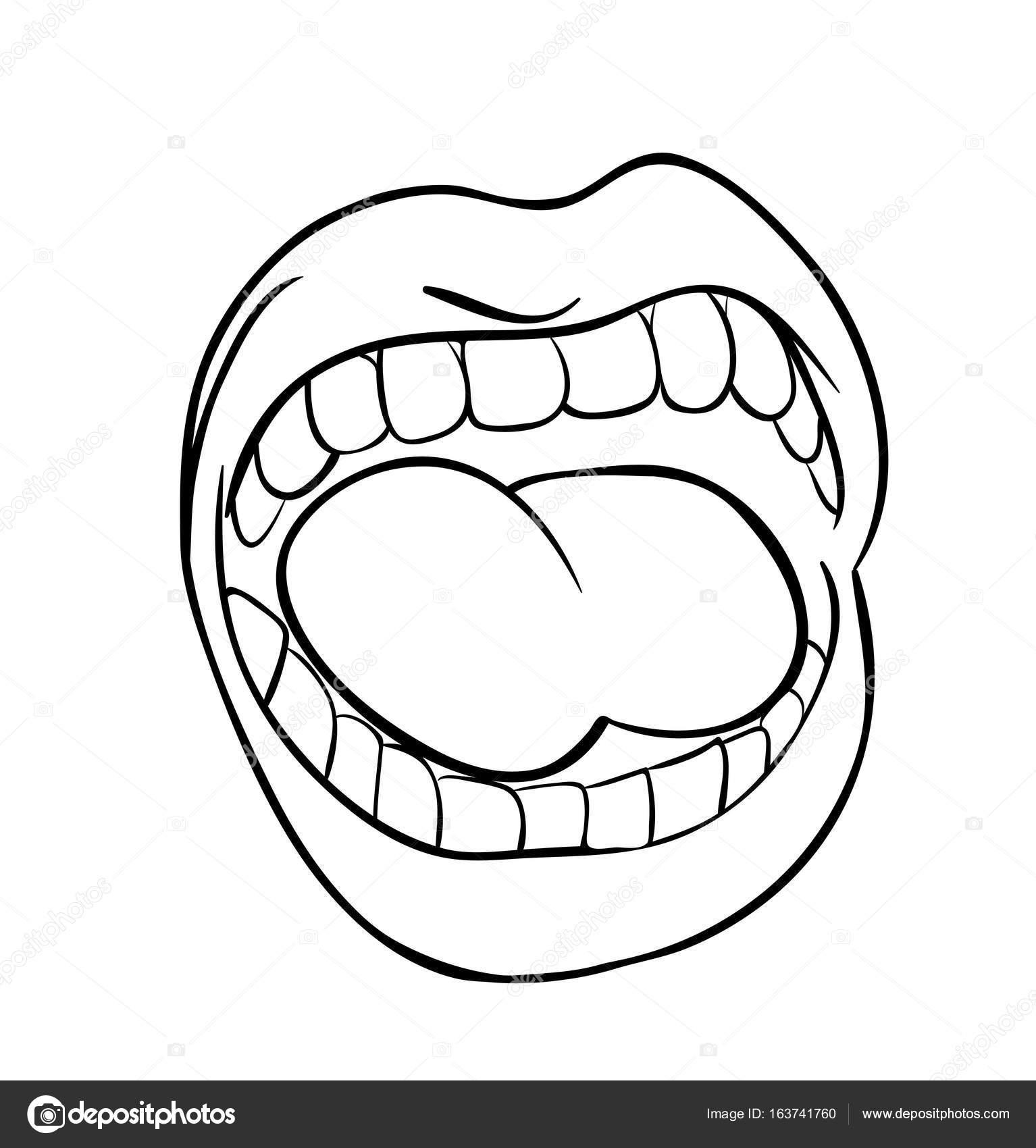 Full Mouth Diagram