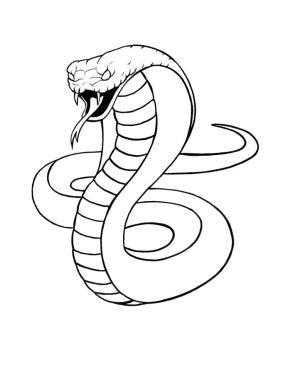 snake cobra drawing draw head skin easy king drawings tattoo step coloring drawn printable cliparts tutorial sketch logos serpent clipart