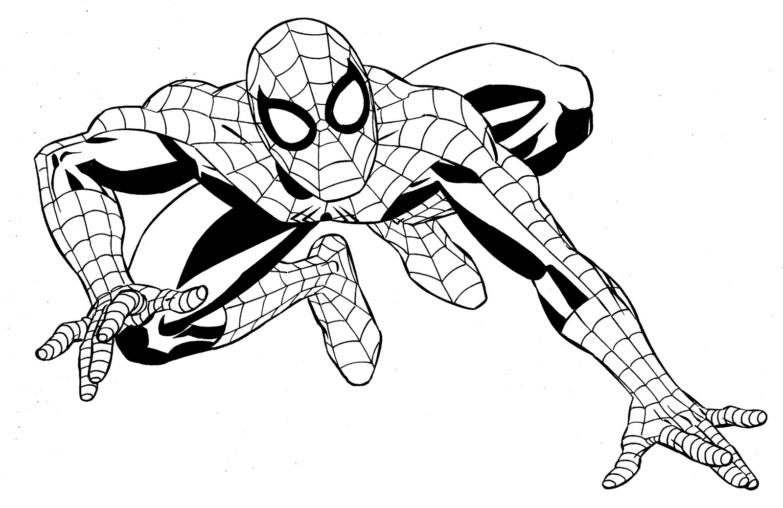Spiderman Line Drawing At Getdrawings