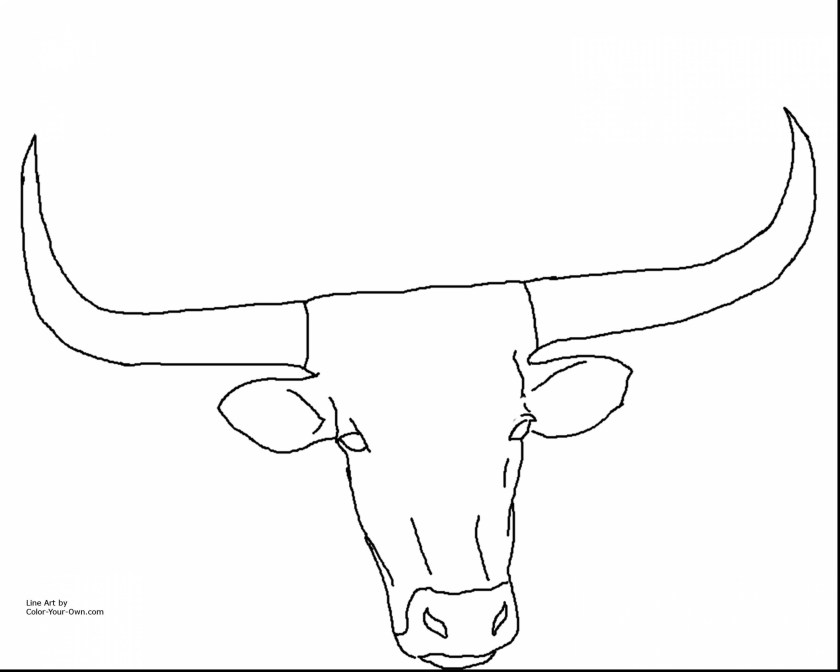 state of texas outline drawing at getdrawings  free download