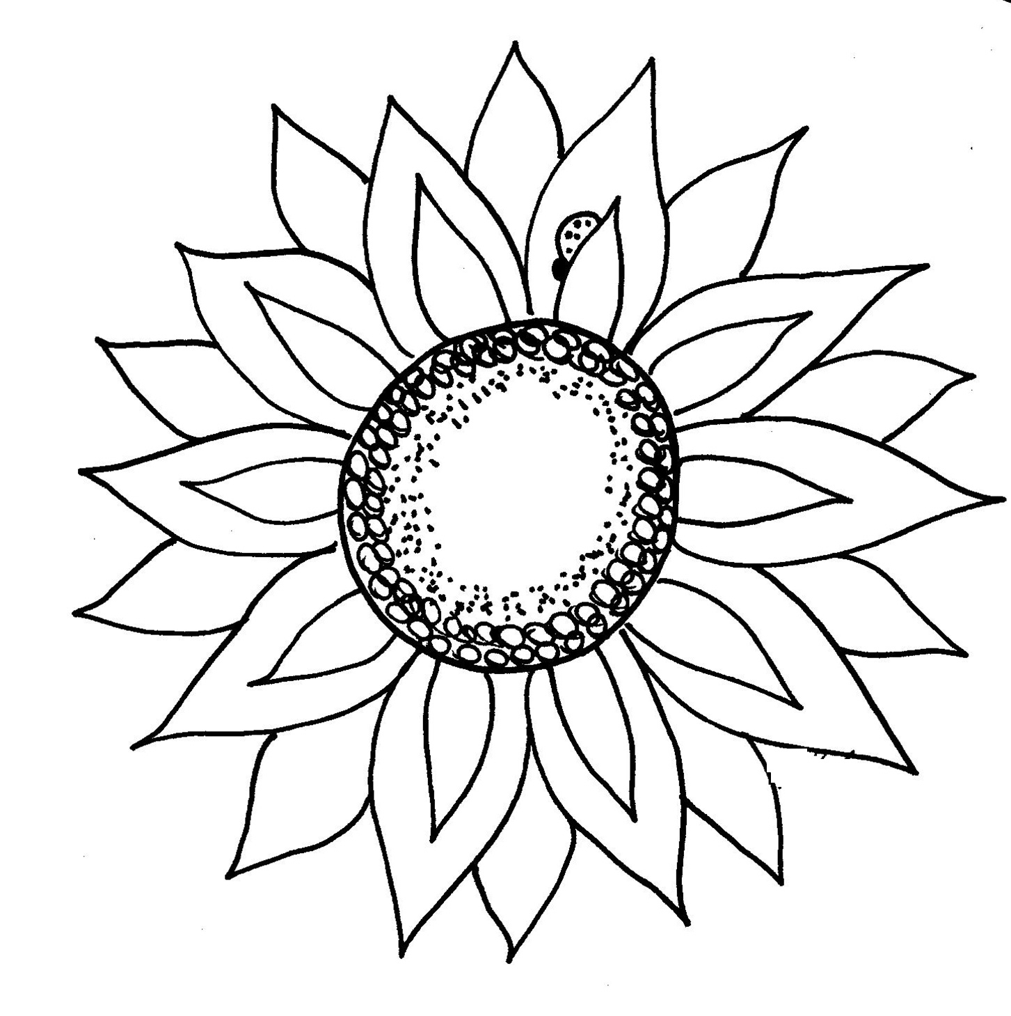 Sunflower Black And White Drawing At Getdrawings