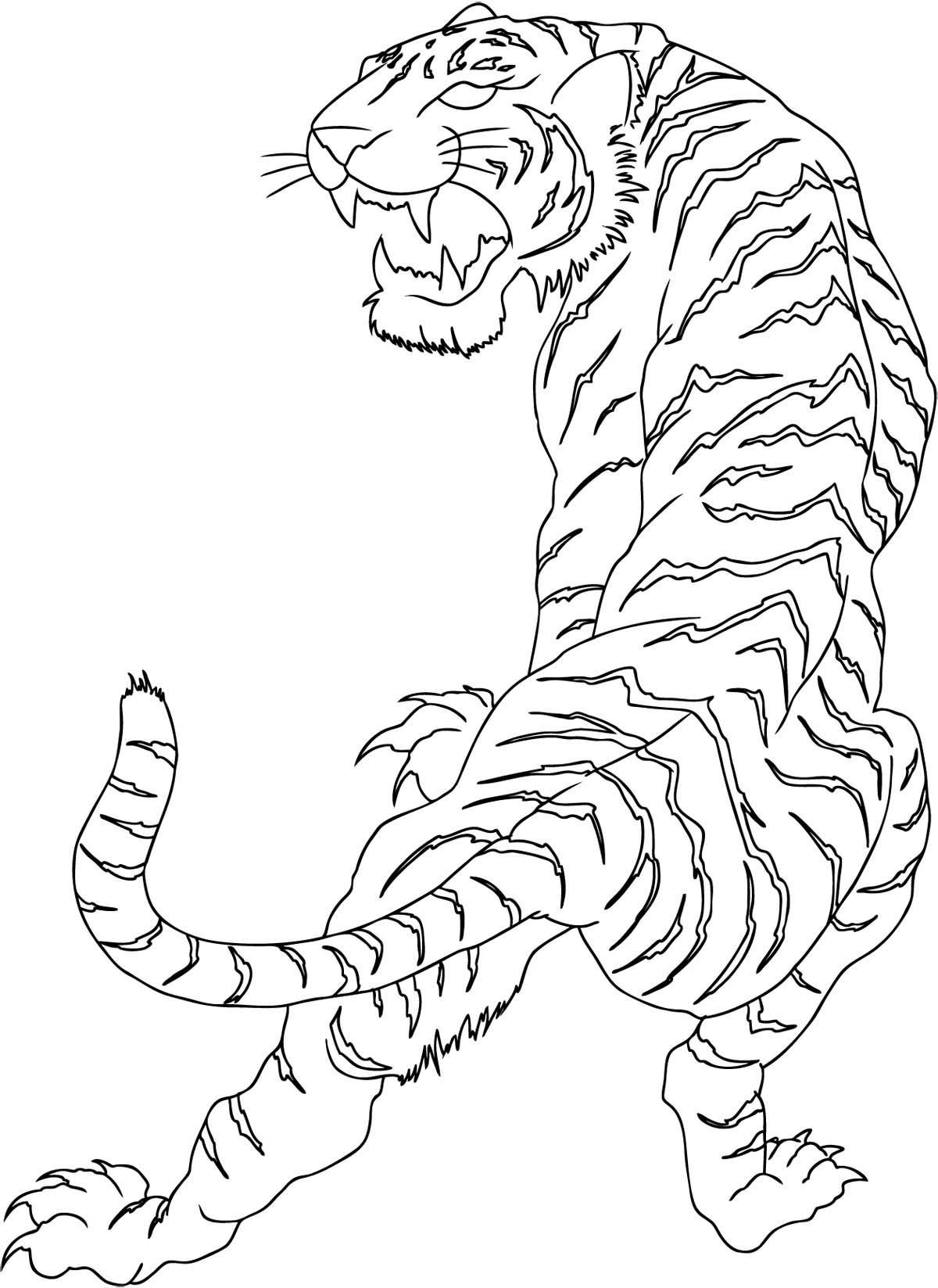 Tiger Shape Worksheet