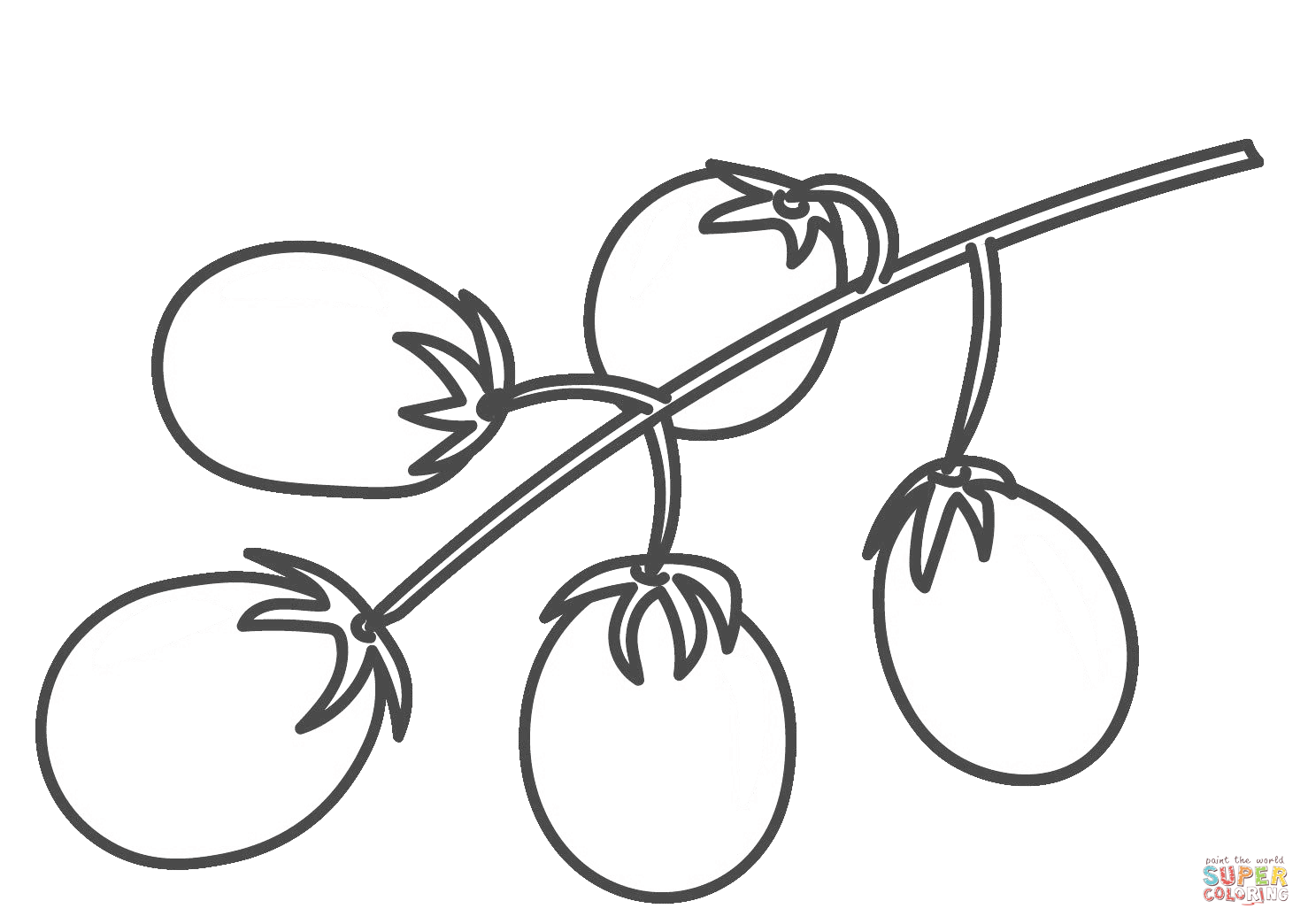 Tomatoes Drawing At Getdrawings