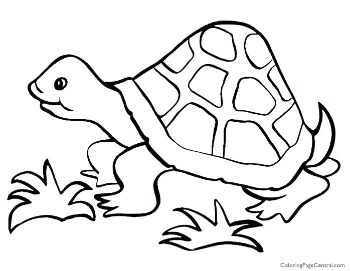 Simple Coloring Pages For Toddlers Elegant Step By Step