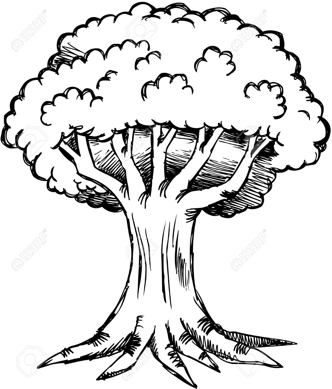 Tree Black And White Drawing At Getdrawings