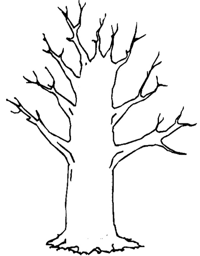 tree in winter drawing at getdrawings  free download