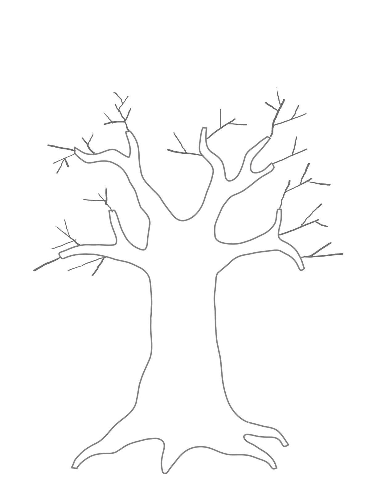 Tree Trunk Drawing At Getdrawings