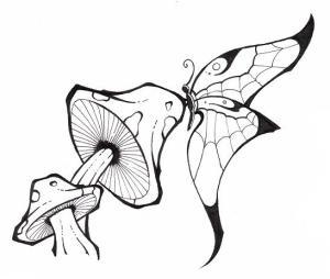 mushrooms mushroom trippy drawing butterflies drawings pencil tattoo flower getdrawings deviantart fairies