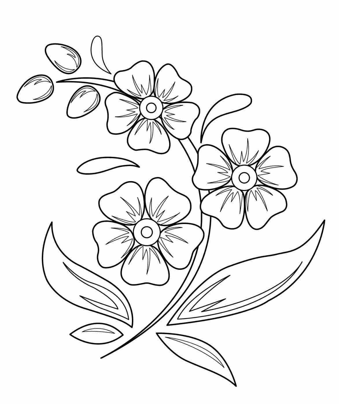Tropical Flowers Drawing At Getdrawings