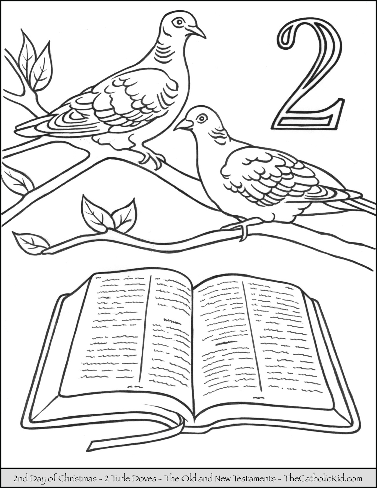 Turtle Doves Drawing At Getdrawings