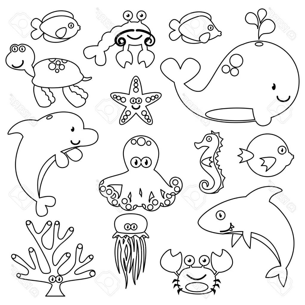 Water Animals Drawing At Getdrawings