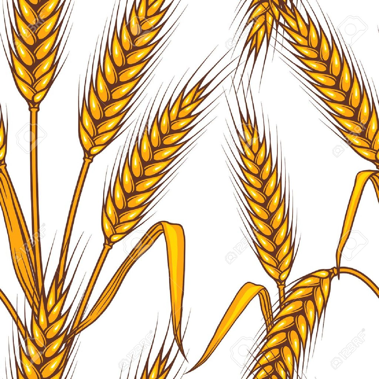 Wheat Field Drawing At Getdrawings