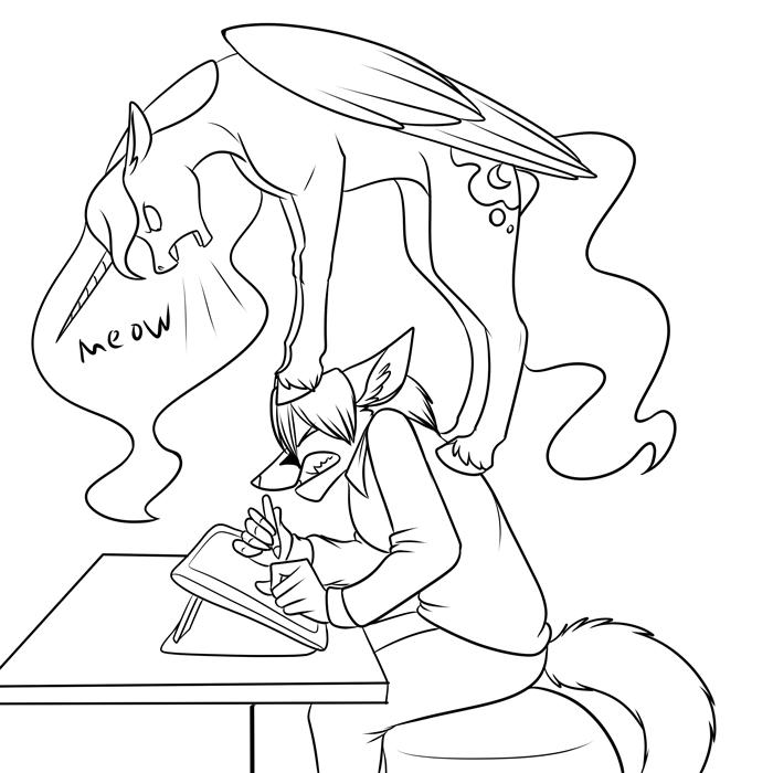 Raccoon Drawing At Getdrawings Com
