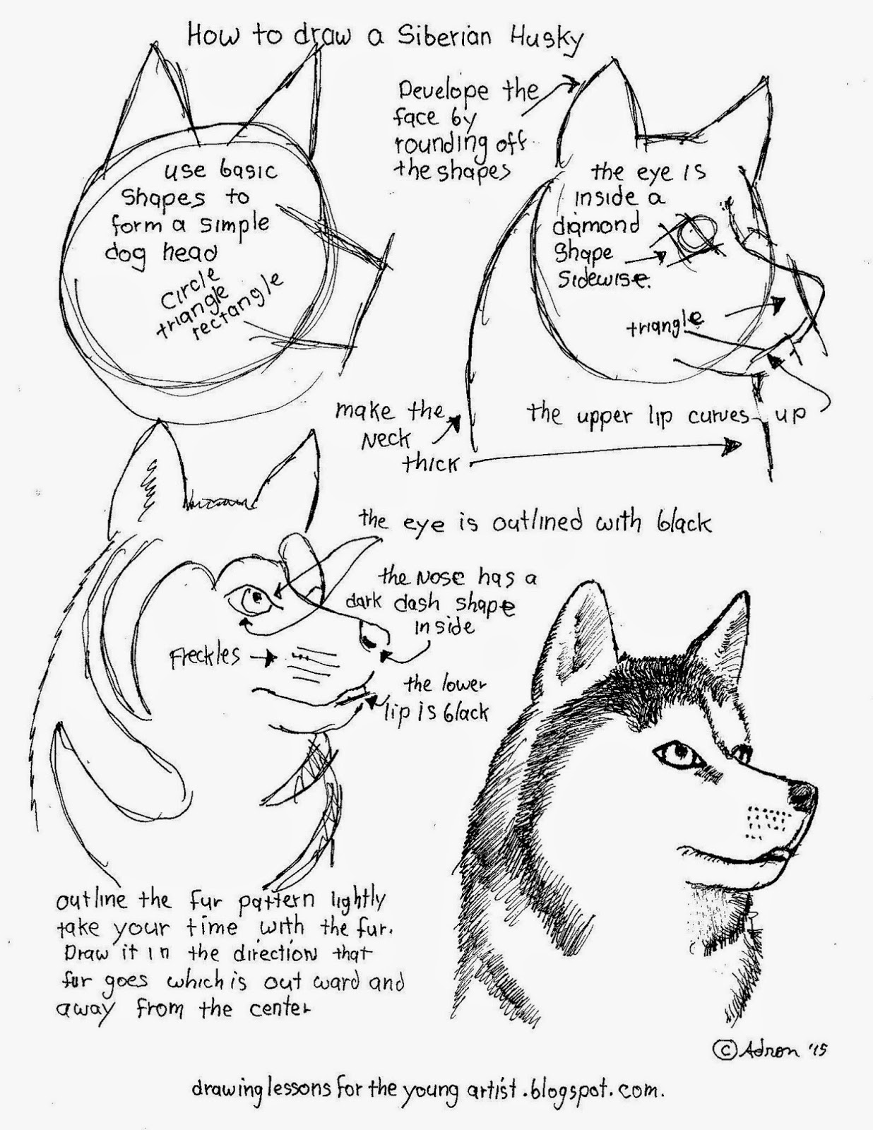 Worksheets Drawing At Getdrawings