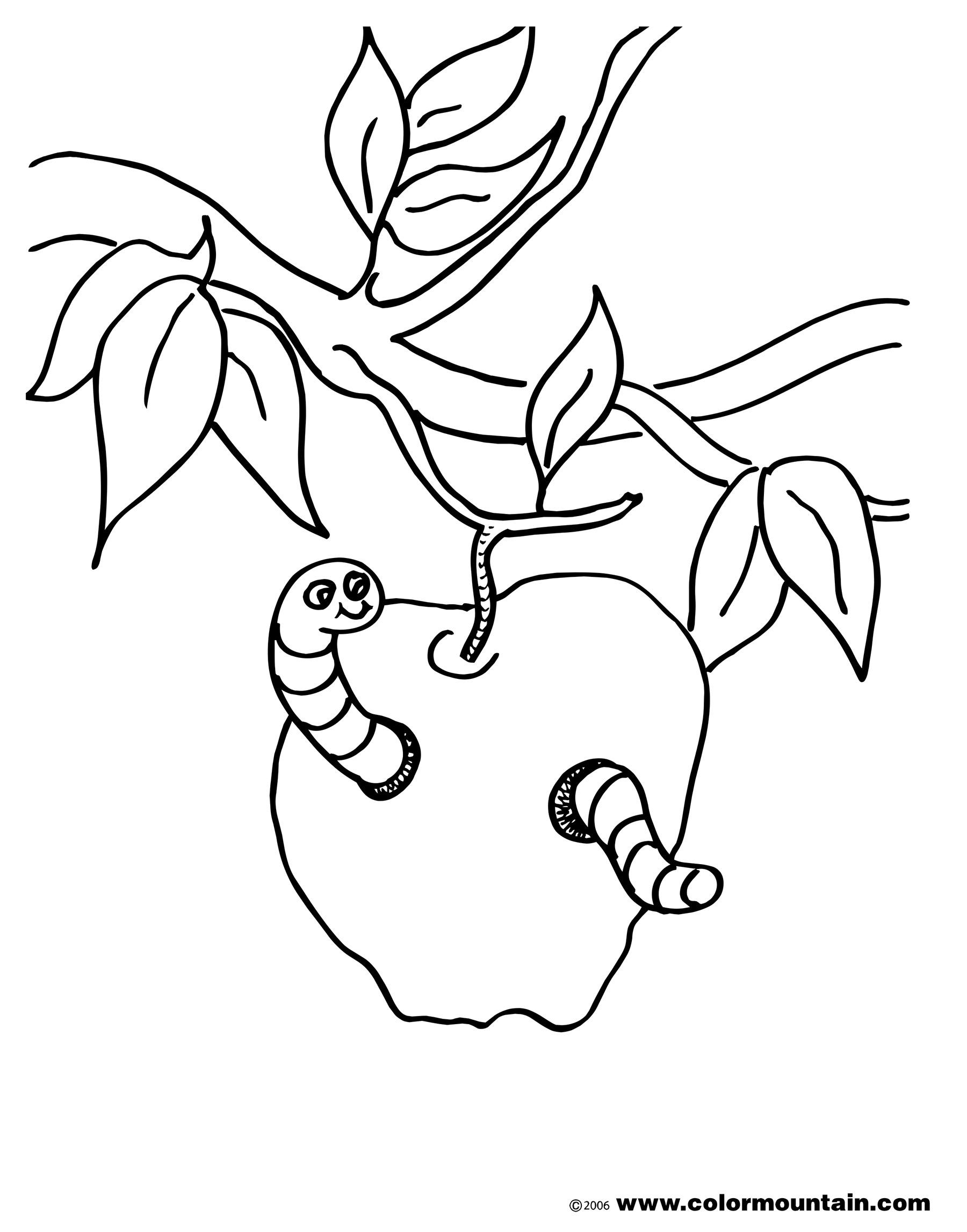 Worm Cartoon Drawing At Getdrawings