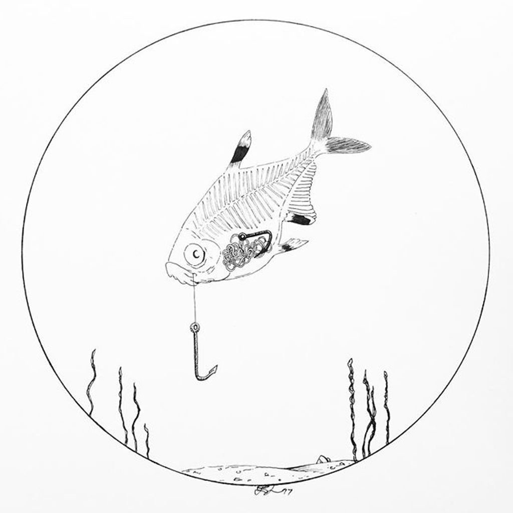 X Ray Fish Drawing At Getdrawings