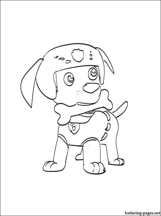 Paw Patrol Advertisement The Labrador Dog Zuma Of Sketch