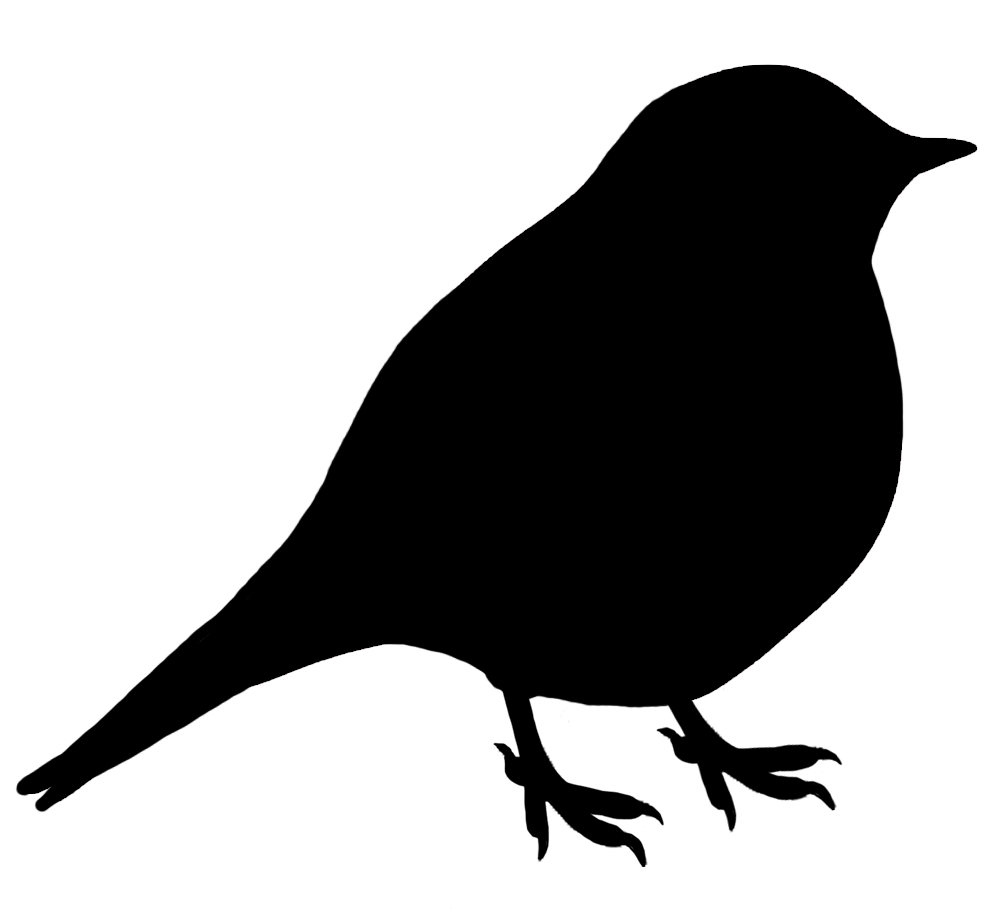 Chickadee Silhouette At Free For