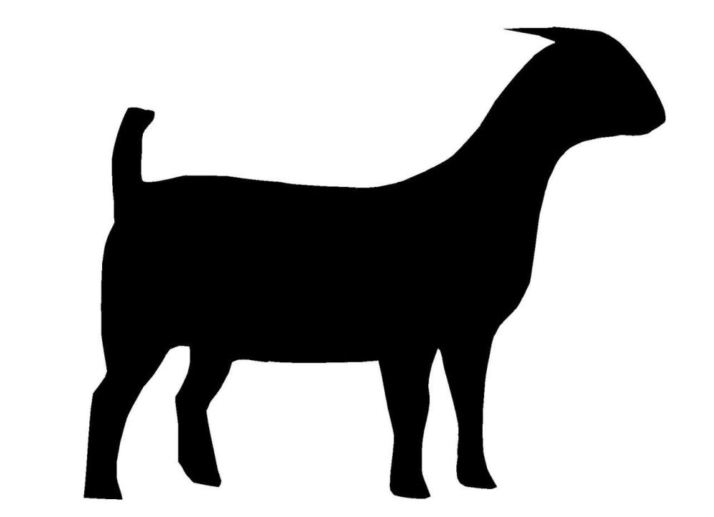 medium resolution of 1280x929 boer goat silhouette clipart panda