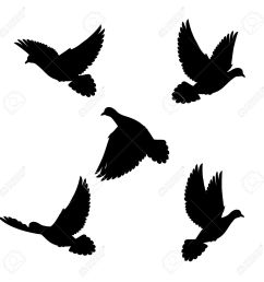 1300x1300 dove hunting clipart collection [ 1300 x 1300 Pixel ]