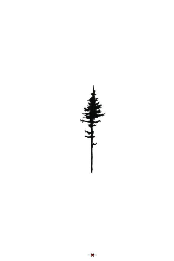 20 Pine Tree Silhouette Sky Tattoos Ideas And Designs