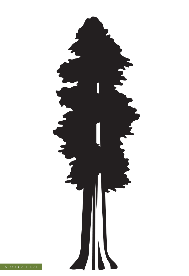 Sequoia Silhouette at GetDrawingscom  Free for personal