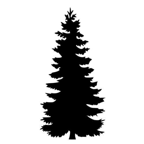 small resolution of 1185x1185 silhouette clipart pine tree