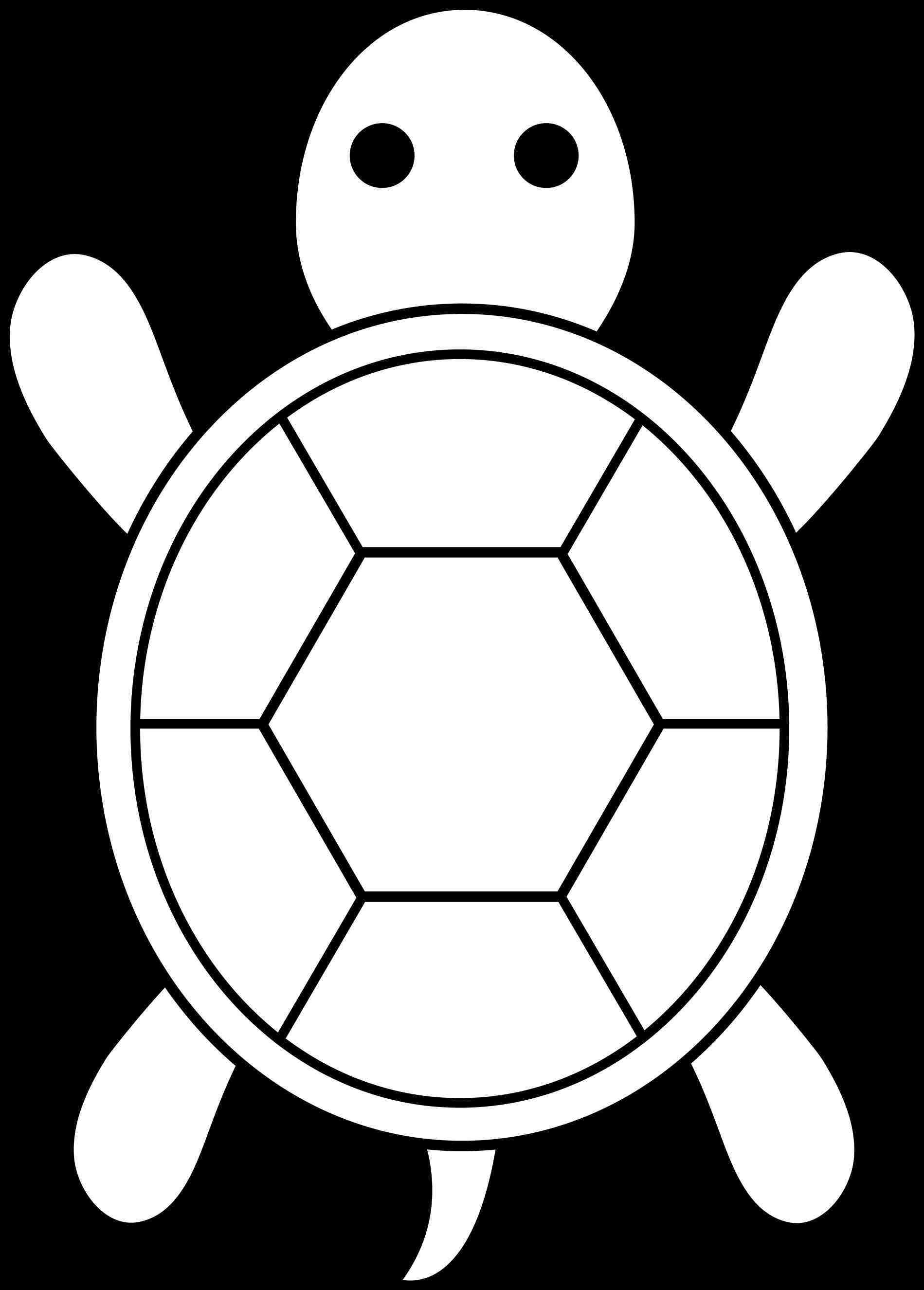 Turtle Shell Silhouette At Getdrawings