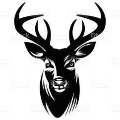 Diagram Of Whitetail Deer Skull Direct Tv Genie Silhouette At Getdrawings Free For
