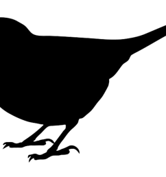 1494x981 bird silhouettes [ 1494 x 981 Pixel ]