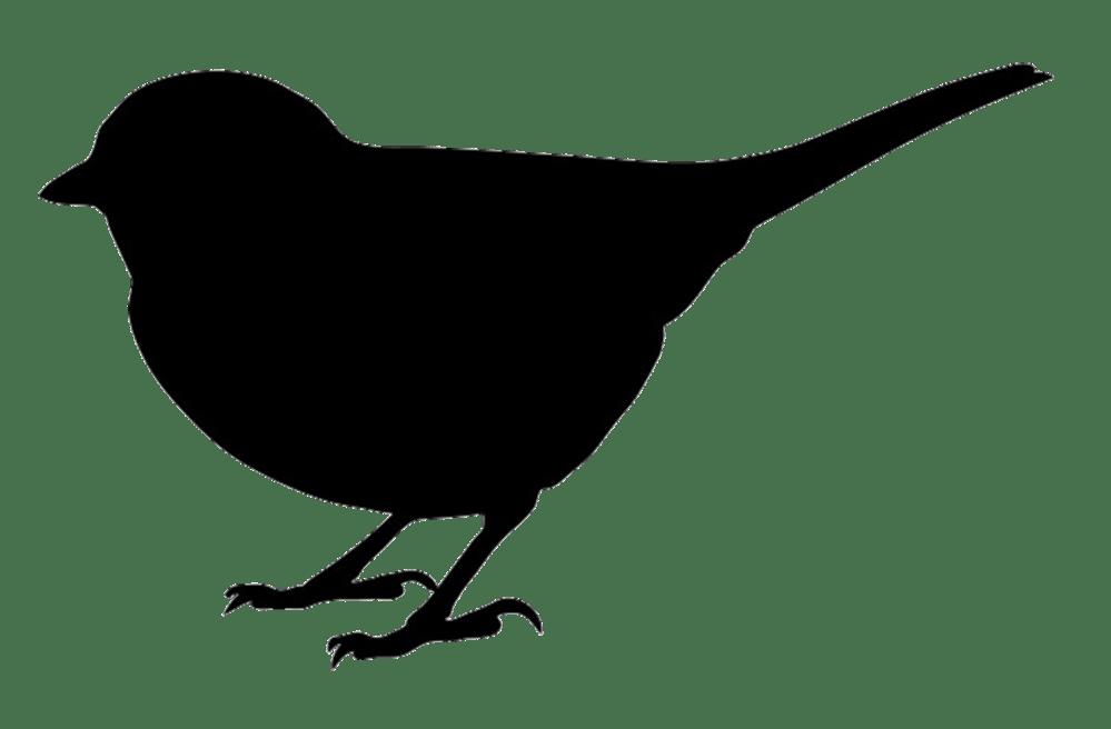 medium resolution of 1494x981 bird silhouettes