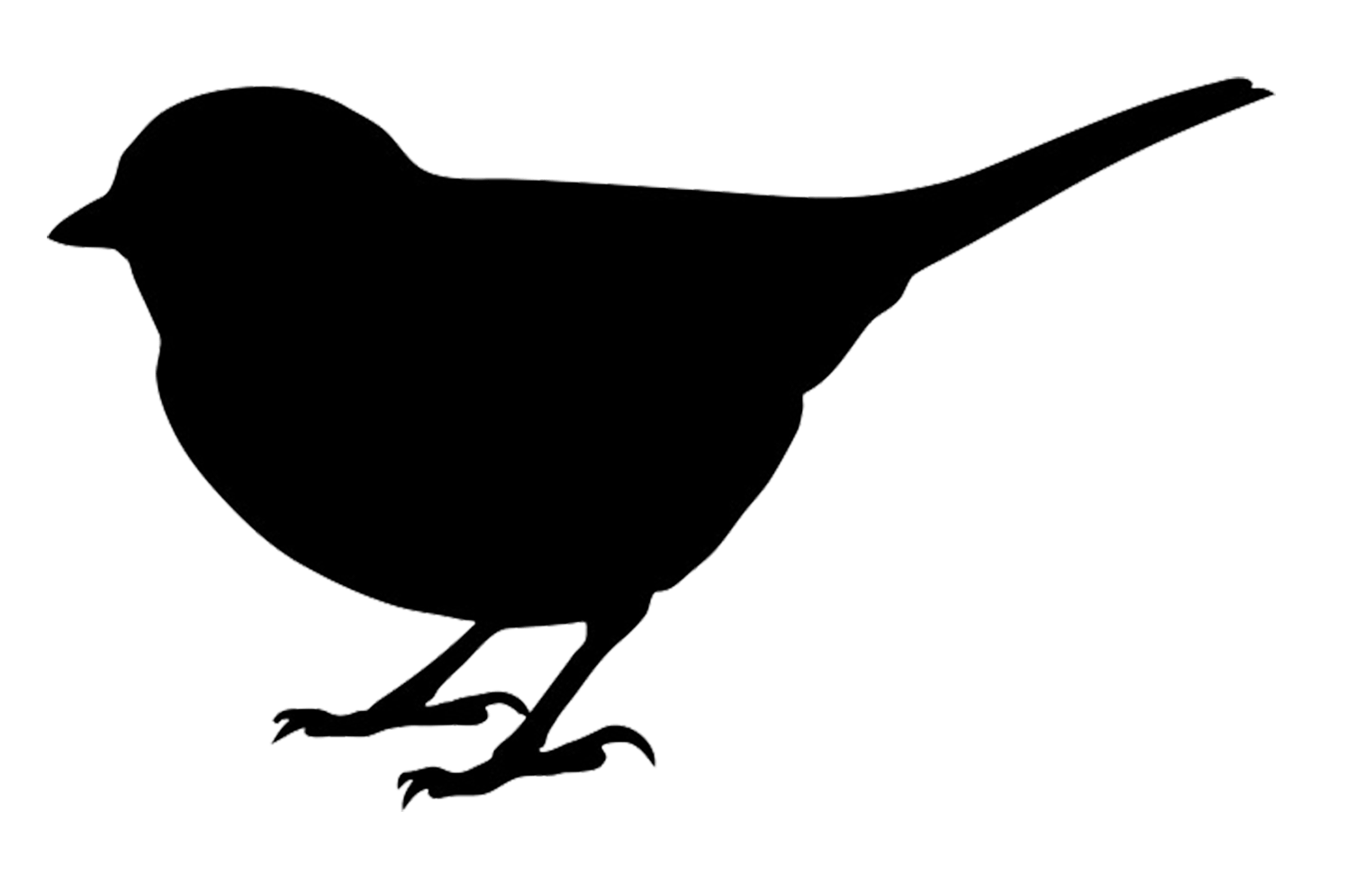 hight resolution of 1494x981 bird silhouettes