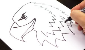 draw cool eagle drawing easy things fun simple drawings beginners hub head stuff bald awesome realistic step kid sketches pencil